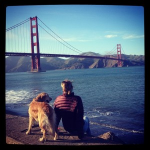 Um Golden Retriever vendo a Golden Gate :)