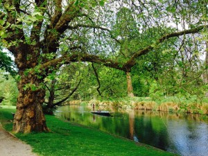 canal verde profundo do botanic gardens de Chrischurch na Nova Zelândia ZN