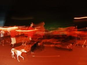 Em 2008, com a cachorra ao lado, repórter se lasca em sua primeira prova de corrida (Foto: Alexandre Battibugli)