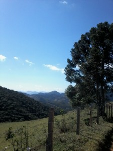 Gonçalves, algum lugar entre Terra Fria e Campestre