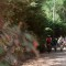Corredores assumem bikes na Serra do Japi/Foto: Oakley